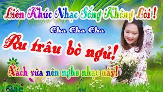 lien-khuc-nhac-song-cha-cha-cha-nhac-song-dam-cuoi