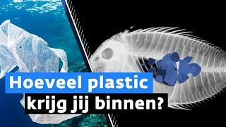 Zo belanden miljarden plastic korrels in jouw dagelijks leven