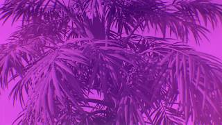Max Styler   Bulletproof (feat. Nevve) [Lyric Video]   Dim Mak Records