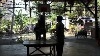 Abe Skole I Chiang Mai