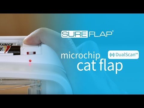Performing a factory reset on your SureFlap DualScan Microchip Cat Door