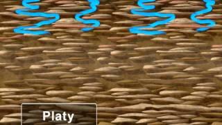 Water - Movement in Soil