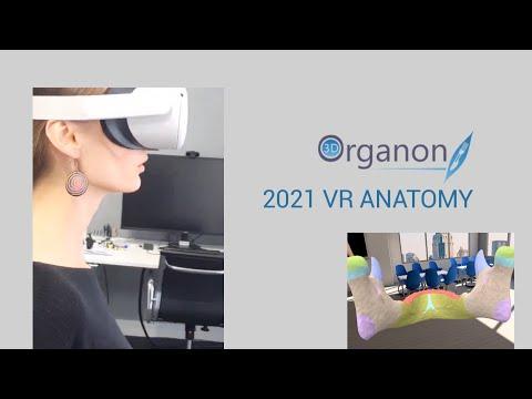 3D Organon VR Anatomy trailer