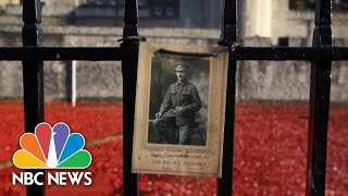 Armistice Day London: Poppies Honor WWI Soldiers   NBC News