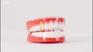 لماذا يجب الاهتمام بالأسنان اللبنية ؟