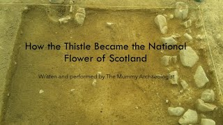 How the Thistle Became the National Flower of Scotland