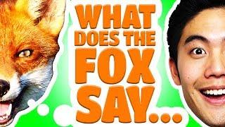Dear Ryan - What Does The Fox Say?