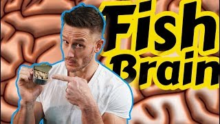 The Super Fish Oil that Beats all Others [Fish eggs?]