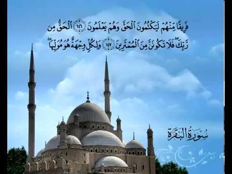 Сура Корова <br>(аль-Бакара) - шейх / Саад Аль-Гомеди -