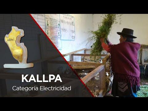 Premios ProActivo - Ganador Kallpa: Fortalecimiento de Crianza de cuyes y Producción de hortalizas