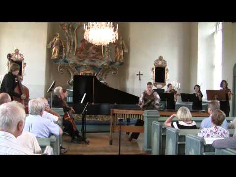 J S Bach - Concerto a moll - 1 Satz
