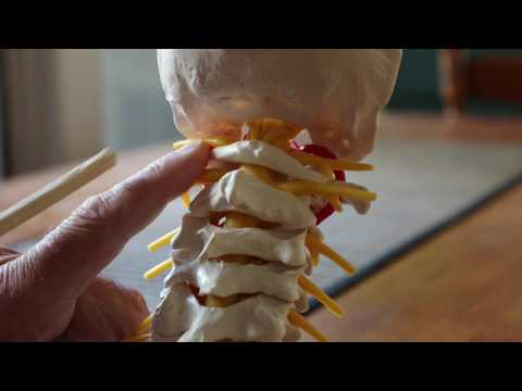 Il trattamento della colonna vertebrale in ospedale di San Pietroburgo