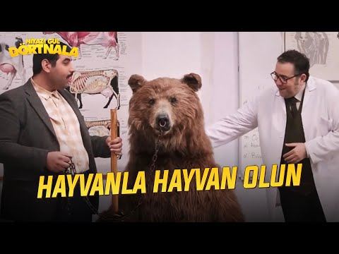 Niyazi Gül Dörtnala (2015) Trailer + Clips