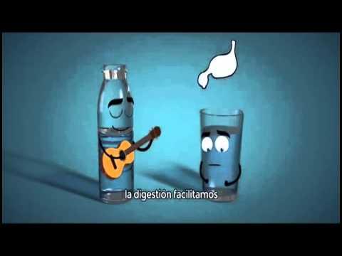 La Importancia de Beber 8 Vasos de Agua al Dia!!!!