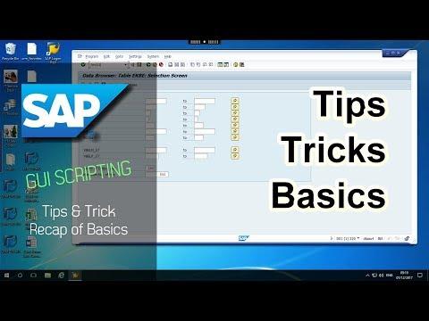 SAP GUI Scripting Tricks, Tips and Basics