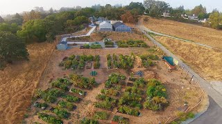 Cinematic FPV Community Garden at Heather Farms