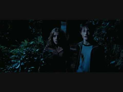 Download Harry Potter The Prisoner Of Azkaban Harry Hermione Part 2 HD Mp4 3GP Video and MP3