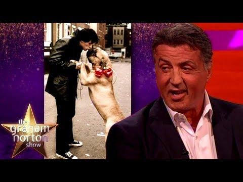 Sylvester Stallone prodal svého psa, aby měl na jídlo