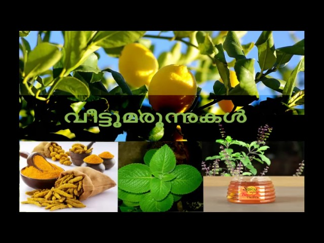 Home Remedies for Baby Cough Fever Colic   Kerala Ayurvedic Remedies