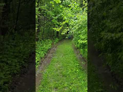 a hike in the rain