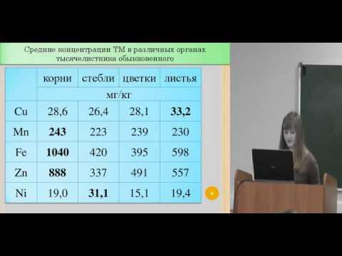 Биоиндикационное исследование загрязнения окружающей среды в окрестностях городов Ивановской области