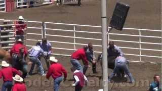 Calf Dressing At The Salinas Rodeo
