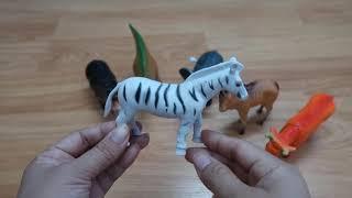 Đồ chơi động vật ❤ Thế giới động vật ❤ Animal world