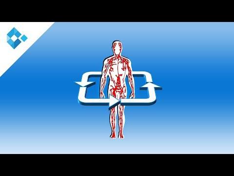 Bewegung senkt den Blutzucker