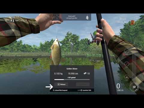 Navi controllate dalla radio autofatte per pesca