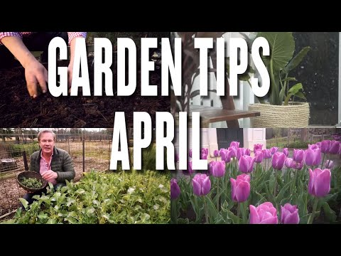 April Garden Tips and Projects: P. Allen Smith (2019)
