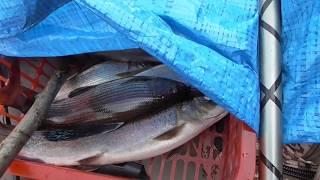 Рыбалка на бирюсе летом