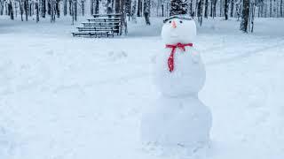 100к за снеговика #100КЗАСНЕГОВИКА #SLIVKISHOW