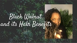 Black Walnut and its hair with Demonstration