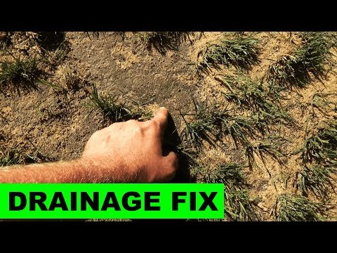 Fixing soggy lawns with sand