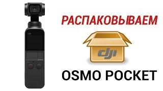 DJI Osmo Pocket РАСПАКОВКА И ПЕРВОЕ ВПЕЧАТЛЕНИЕ + ТЕСТ