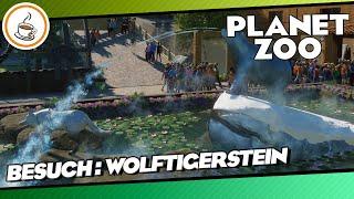 Wolftigerstein von Wolftiger «» PLANET ZOO Community Besuch 🏕   Deutsch German