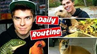 Daily Pet Care Routine! (Reptiles, Birds, + More!)