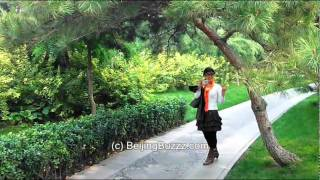 Video : China : Green space along the second ring road, BeiJing 北京