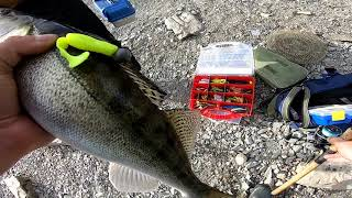 Рыбалка на угрюм реке в новосибирске