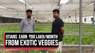 IIT Grads With Zero Farming Experience Earn Rs 80 Lakh/Month From Exotic Veggies | Cobrapost