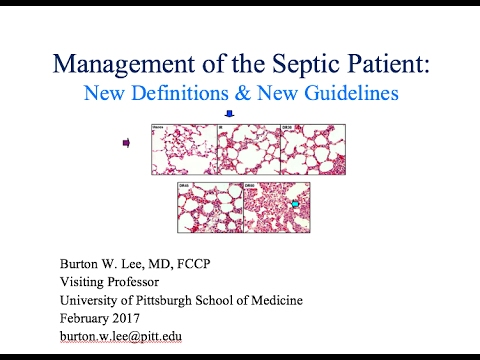 Sofa Guidelines Sepsis Pdf | Review Home Co
