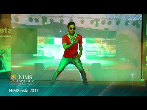 NIMSiesta 2017 - NIMS University