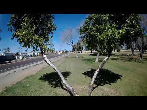 Geprc CineEye 79HD Modded - FPV Phoenix Cactus Park Warm Afternoon