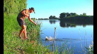 Я вышёл на рыбалку, душа моя тут отдыхает. Природа, закидушки, лодка, рыбка