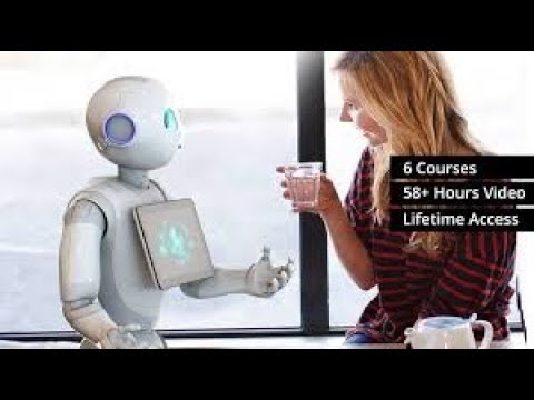 AI and Machine Learning E-Degree - A Complete Masterclass (Preview)