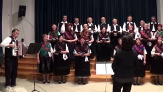 preview picture of video 'Mondschein Kórus, Szekszárd - Nemzetiségi nap 2013 - gálaműsor'