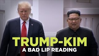 """""""TRUMP KIM SUMMIT"""" — A Bad Lip Reading"""