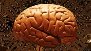 Explainer: How Many Megabytes Does Your Brain Hold?