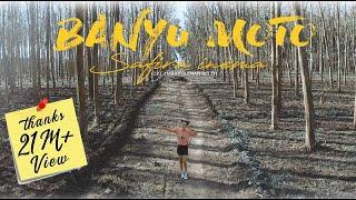 Download lagu Safira Inema Banyu Moto Dj Santuy Full Bass Horeg Mp3