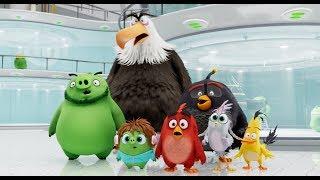 Angry Birds traileri
